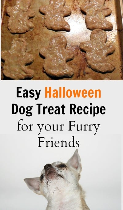 Make this easy Halloween dog treat recipe as a yummy surprise for your pet. This homemade recipe is made with oatmeal and peanut butter so it's great for DIY lovers.