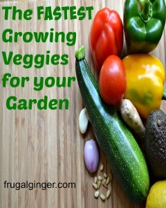 The Fastest Growing Vegetables for your Garden