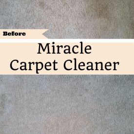 Use this all natural carpet cleaner to get out the tough stains. Only costs pennies to make!