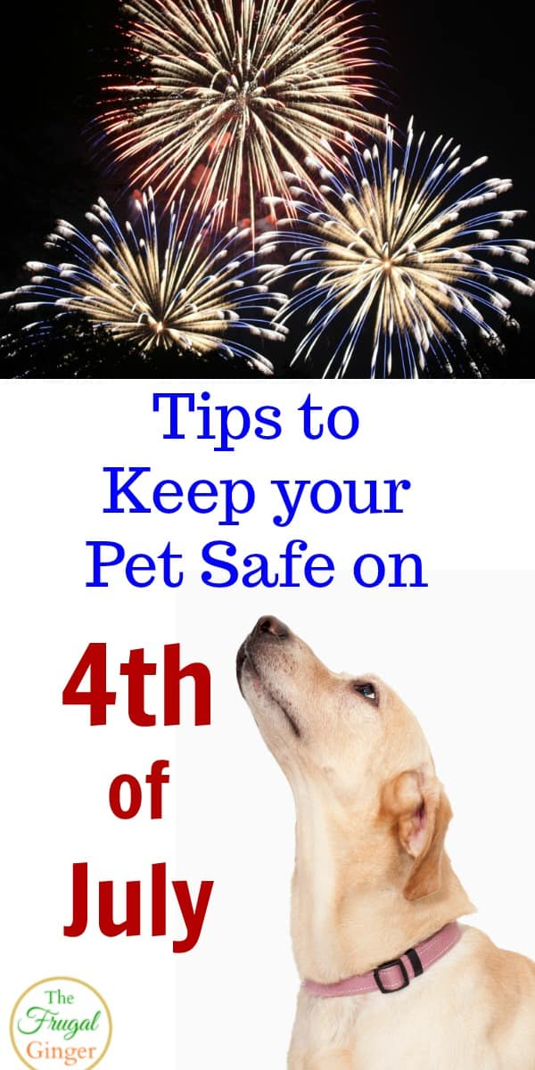 These summer pet safety tips are a must read for any pet owner. Learn how to keep your dog safe this 4th of July. Great ideas for dogs who are afraid of fireworks!