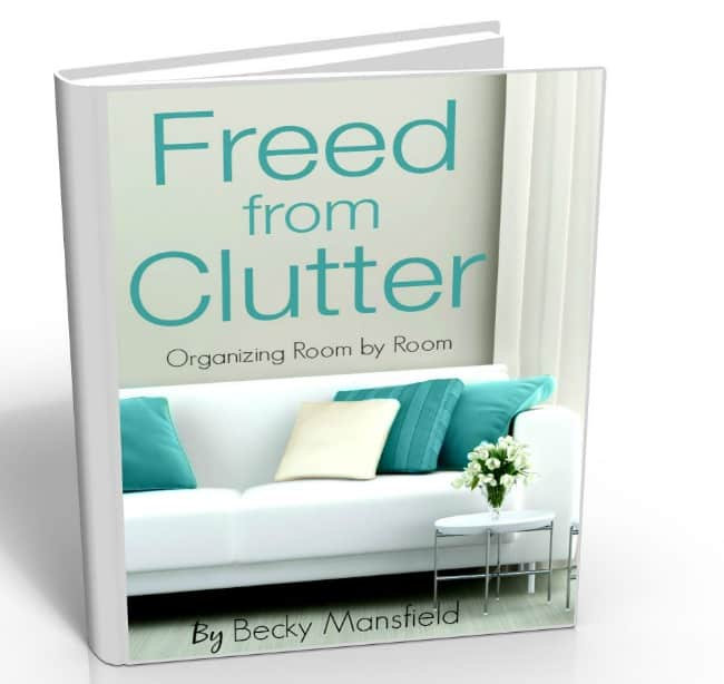 freed-from-clutter-3d-book
