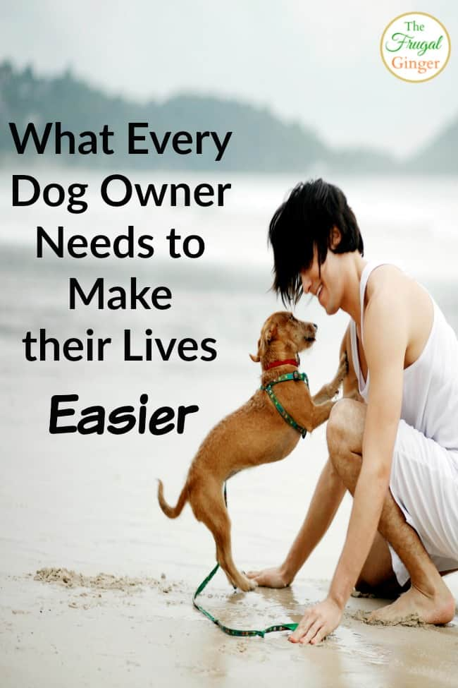 what every dog owner needs to make their lives easier