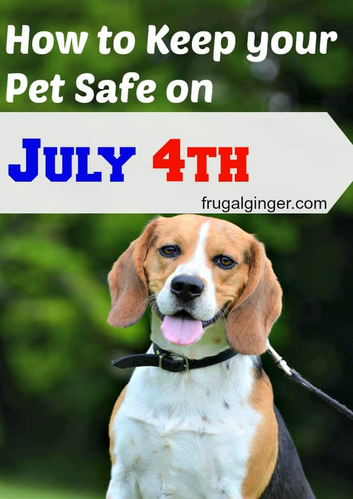 Keep-your-Pet-Safe-on-4th-of-July