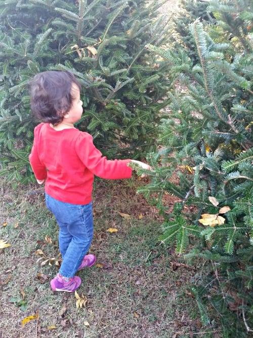 child and christmas tree