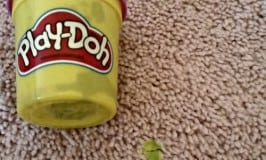 How to Easily get Play-Doh Out of Carpet
