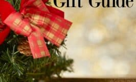 2017 Holiday Gift Guide: Ideas for Everyone on your List