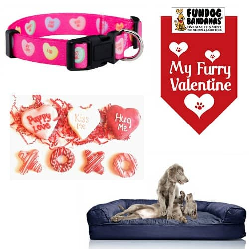 Use this list of easy and fun Valentine's Day gift ideas for dogs to spoil your fur baby this holiday. These items are so cute, your furry friend will love them!
