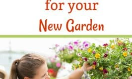 Starting a New Garden: Secret Shopping Tips you Need to Know