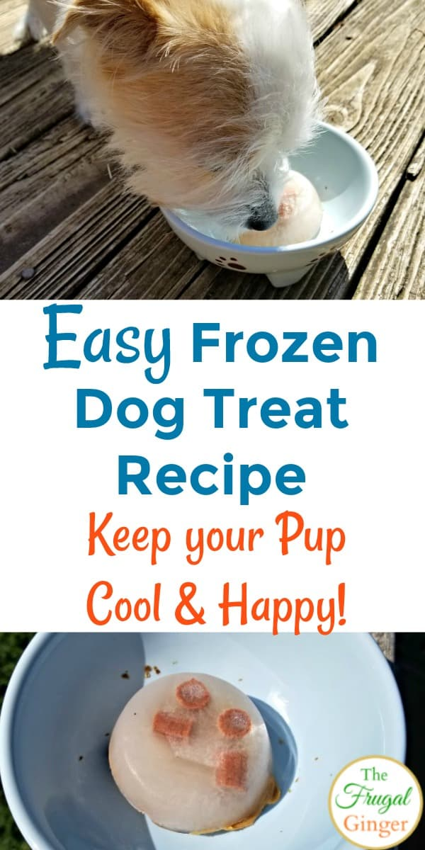 This easy frozen dog treat recipe is a simple homemade way to keep your dog cool this summer. See how to make these diy ice cubes with chicken broth...no yogurt required!