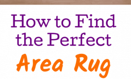 Finding the Perfect Area Rug for your Space