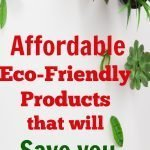 Eco-Friendly Products that Will Save you Money: Save $1,000's